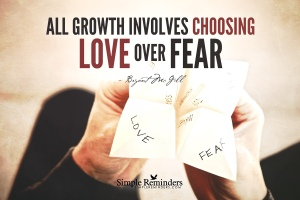bryant-mcgill-fear-love-choice